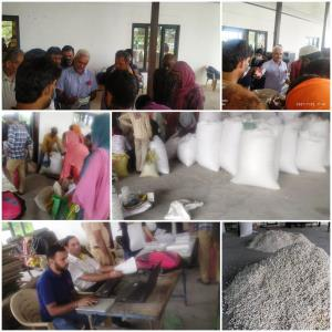 Cocoon auction organized at Pouni