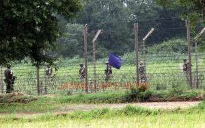 BSF shoots dead Pak intruder along IB in Samba